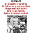 Musculation prise masse