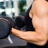 Musculation proteine par jour