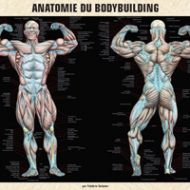 Musculation site