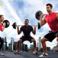 Musculation tout le corps