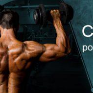 Musculation v