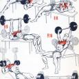 Musculations pectoraux