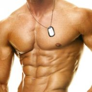 Pectoraux muscler