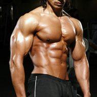 Plus de muscle
