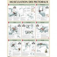Poster musculation