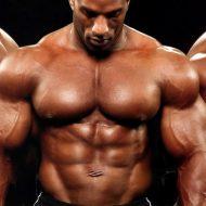 Prendre de la force en musculation