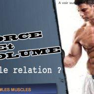 Prise de force musculation