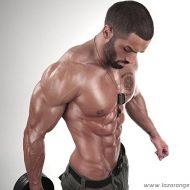 Prise de muscle