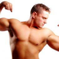 Prise de muscle sans graisse