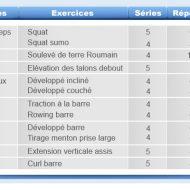 Programme de entrainement de musculation