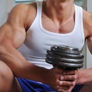 Programme de masse musculation