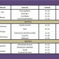 Programme de musculation abdos