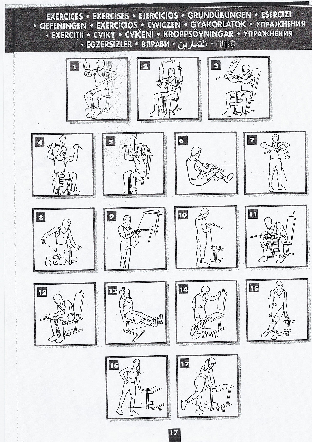 exercice musculation machine