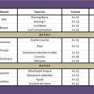 Programme de musculation des abdominaux