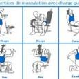 Programme de musculation pour les débutants