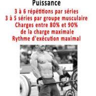 Programme de musculation prise de volume musculaire
