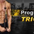 Programme de musculation triceps