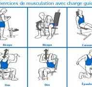 Programme du musculation