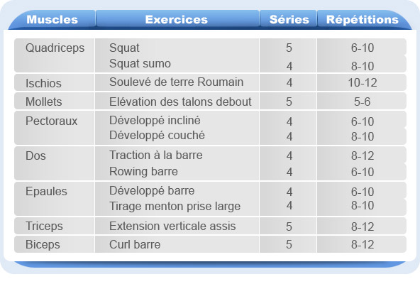 programme entrainement musculation