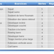 Programme exercices musculation