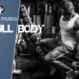 Programme musculation full body intermediaire
