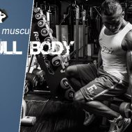 Programme musculation full body intermediaire