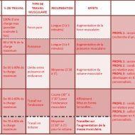 Programme musculation natation