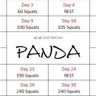 Programme pour se muscler