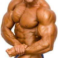 Protéine pour les muscles
