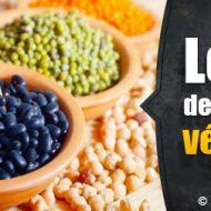 Protéines végétales musculation