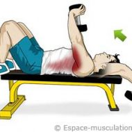 Pull over musculation