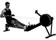 Rameur et musculation
