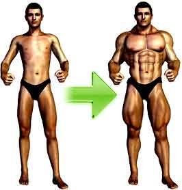 regime pour grossir en muscle