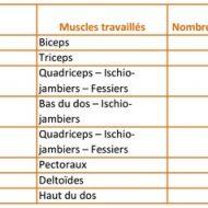 Seance de musculation
