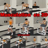 Site musculation