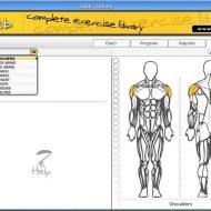 Telecharger programme de musculation gratuit
