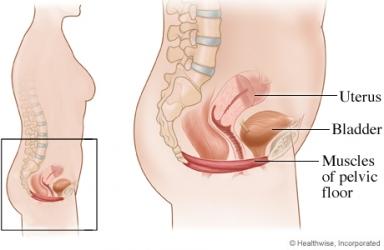 tighten vaginal muscles