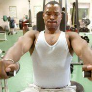 Tout sur la musculation