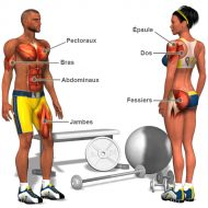 Video musculation femme