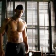 Will smith muscles
