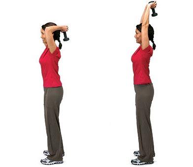 muscler triceps femme rapidement