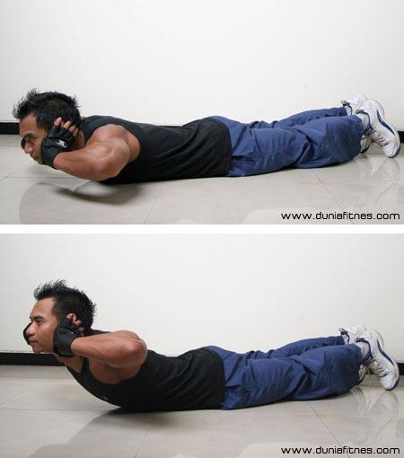 comment muscler son dos sans appareil