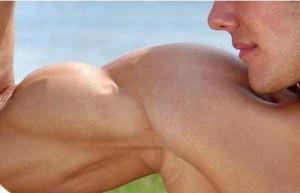 comment se muscler les bras rapidement sans matériel