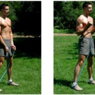 Video elastique musculation